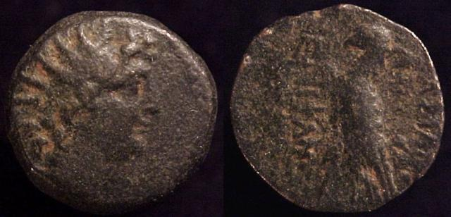 Antiochos VIII, Sole reign: 121-96 B.C. Æ17mm